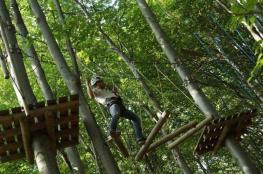 Niechobrz Atrakcja park linowy LEŚNY TABOR